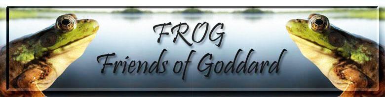frog8.jpg