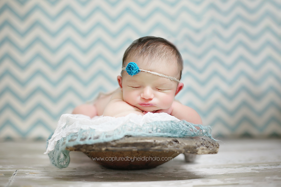 6-central-iowa-newborn-photographer-baby-girl-with-sister-huxley-ames-ankeny-desmoines.png