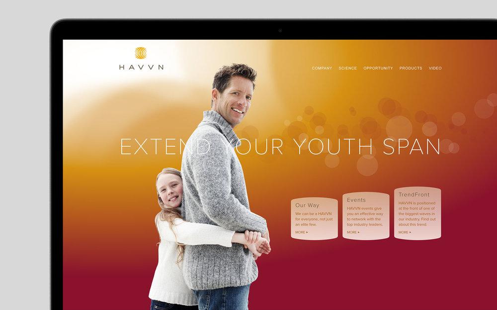 Havvn_02.jpg