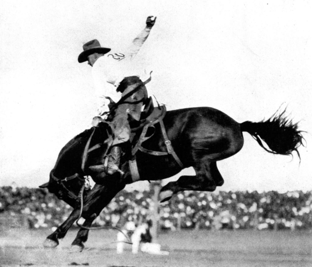 vintage rodeo photo 810165.jpg