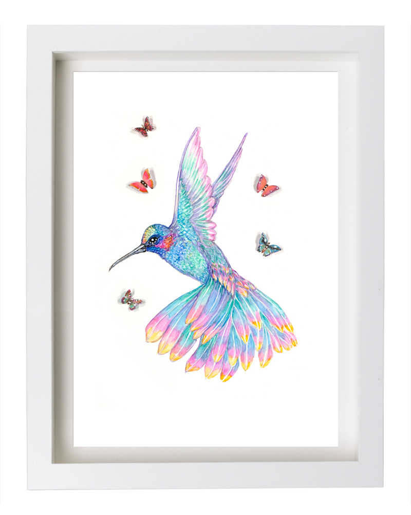 hummingbird_framed.jpg