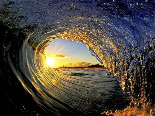 Surfer.com