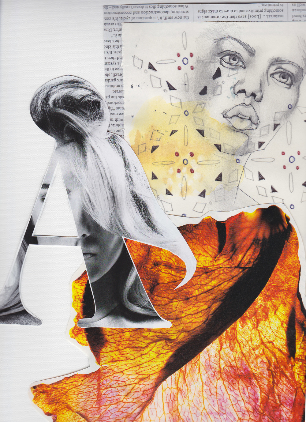 Photo montage II,  mixed media collage, 57x46cm