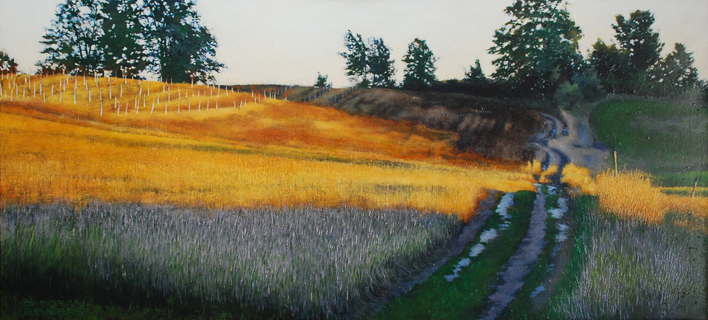 Little Field, Illuminated   oil on canvas  h 24  w 48 inches