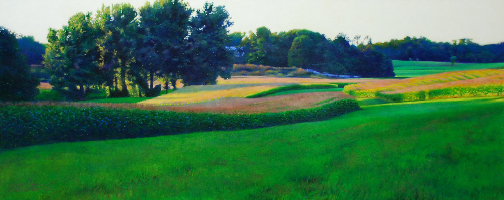 Distant Meadow   oil on panel  h 20  w 47 inches