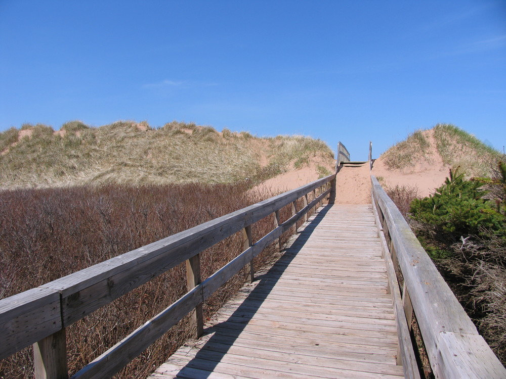 Boardwalk to Stanhope Beach - 700 Meters from cottages