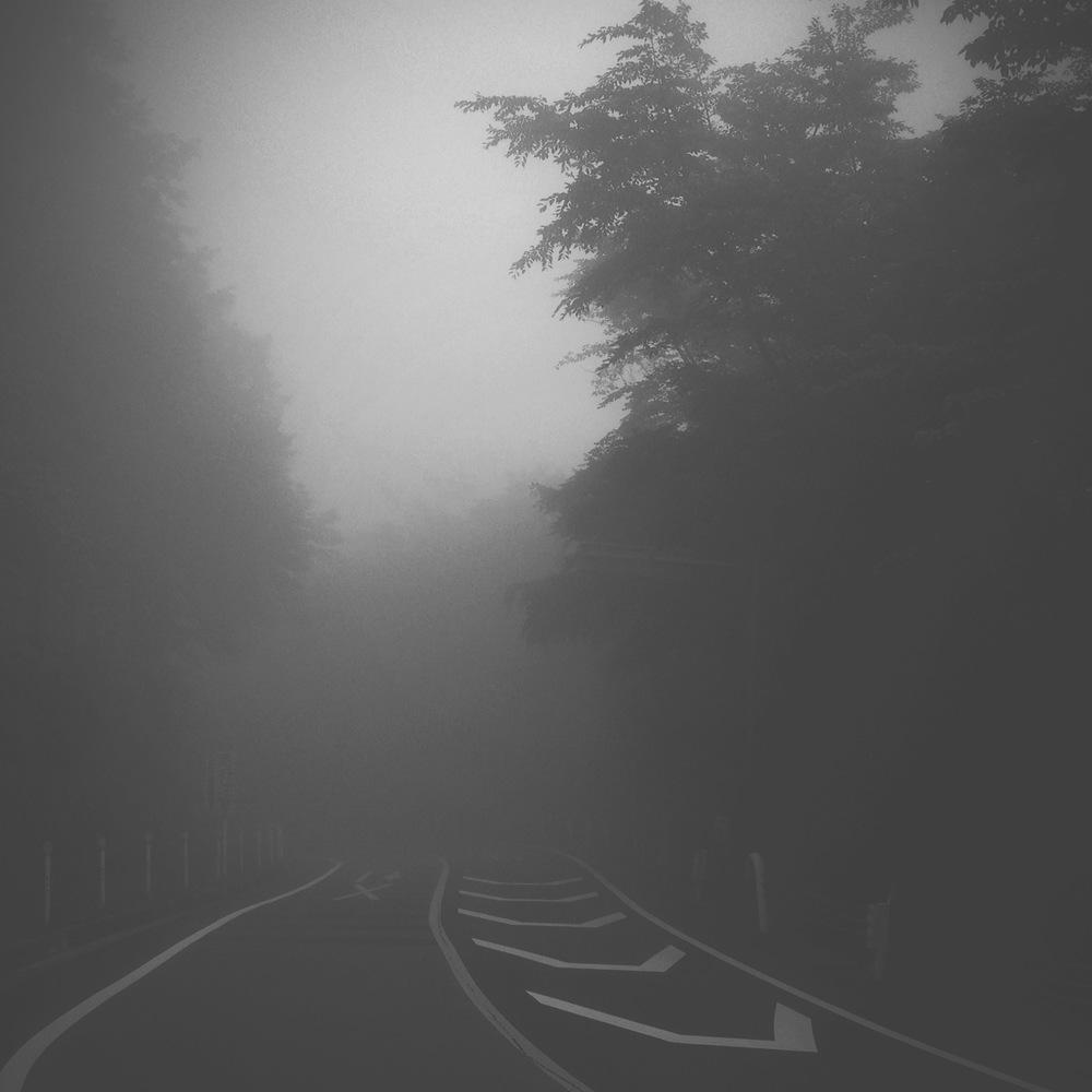 都民の森 7am