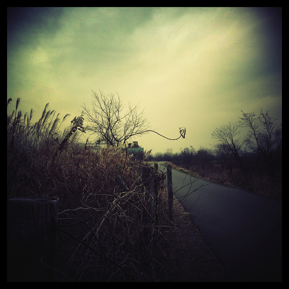Tamagawa -The Road Beyond