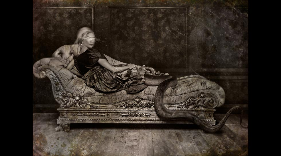 Angela AHS Snake