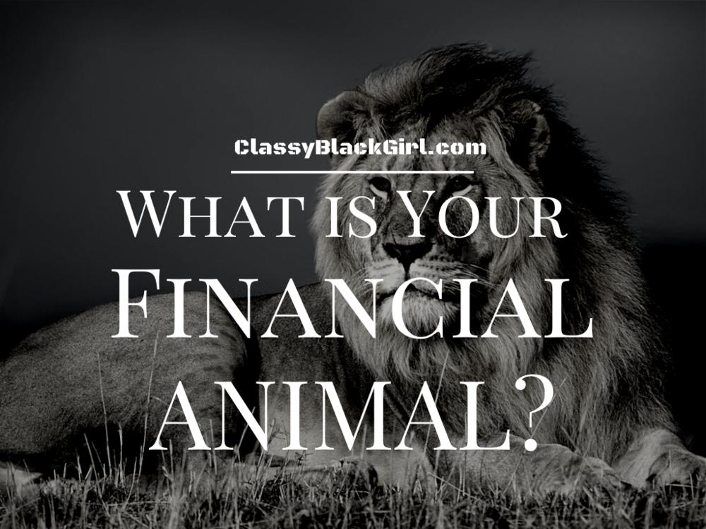 Financial Animal 1