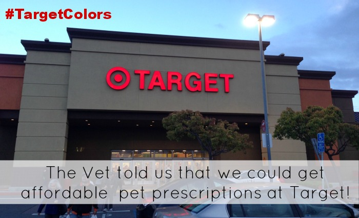 Pet Medication on the Frugal Side at Target! #TargetColors Hoss My Dog