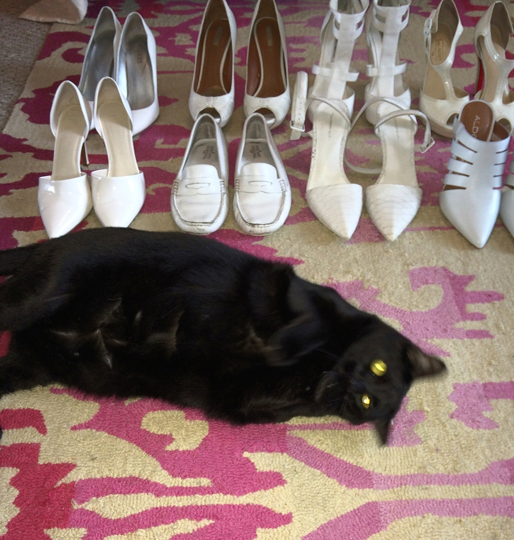 Gia decided she was more important than my white shoe addiction.