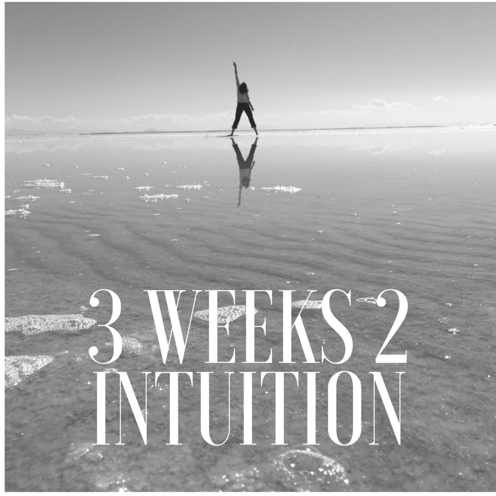 3 weeks 2 intuition bw.png
