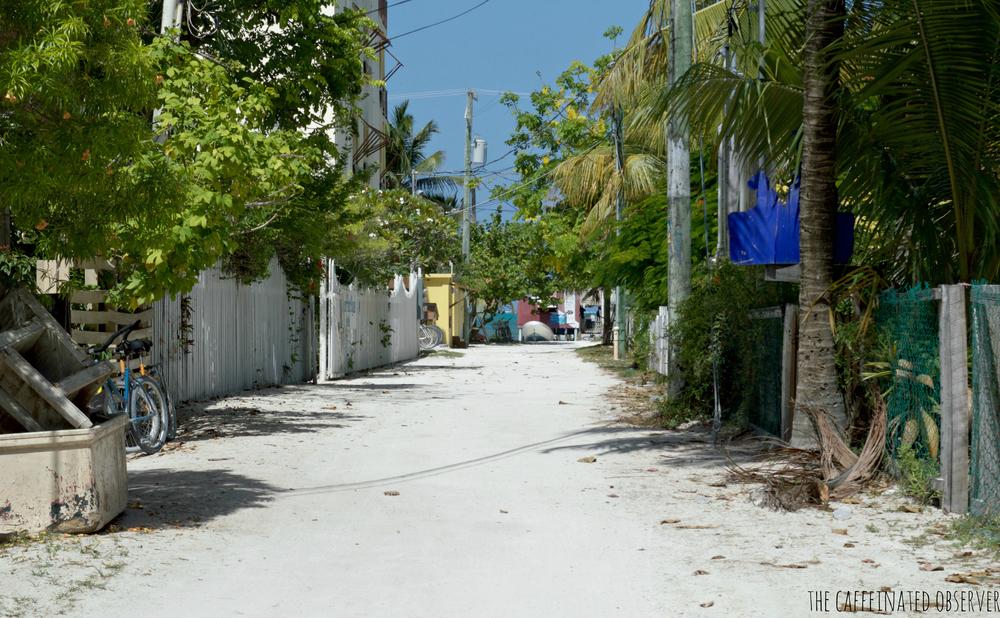 sidestreet1.jpg