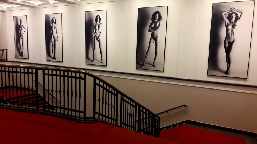 Museum of Photography / Helmut Newton Foundation