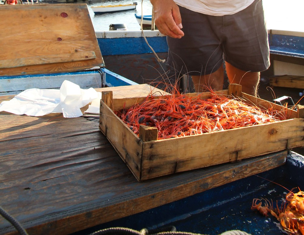Lucio, the local fisherman, and his bounty of fresh prawns