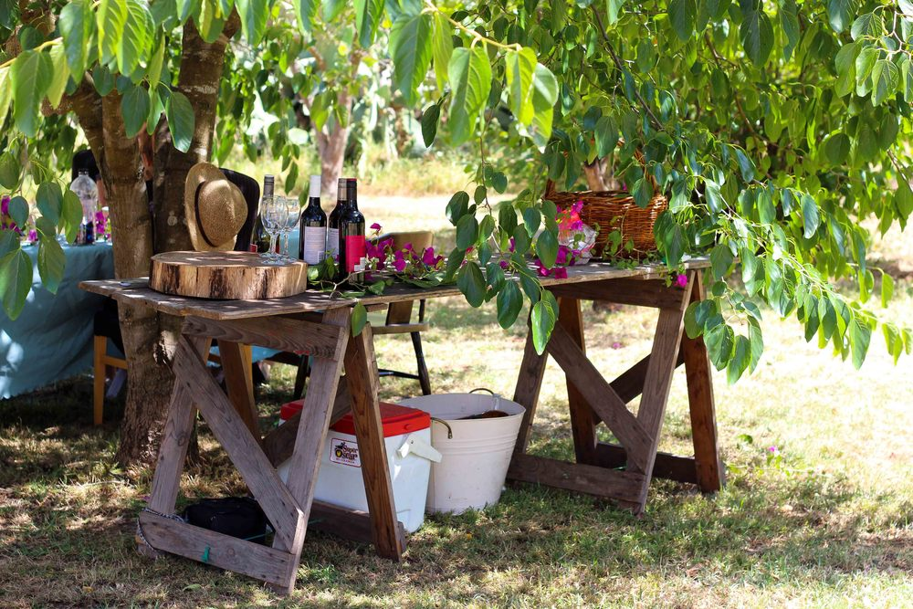 Christmas under the mulberry tree