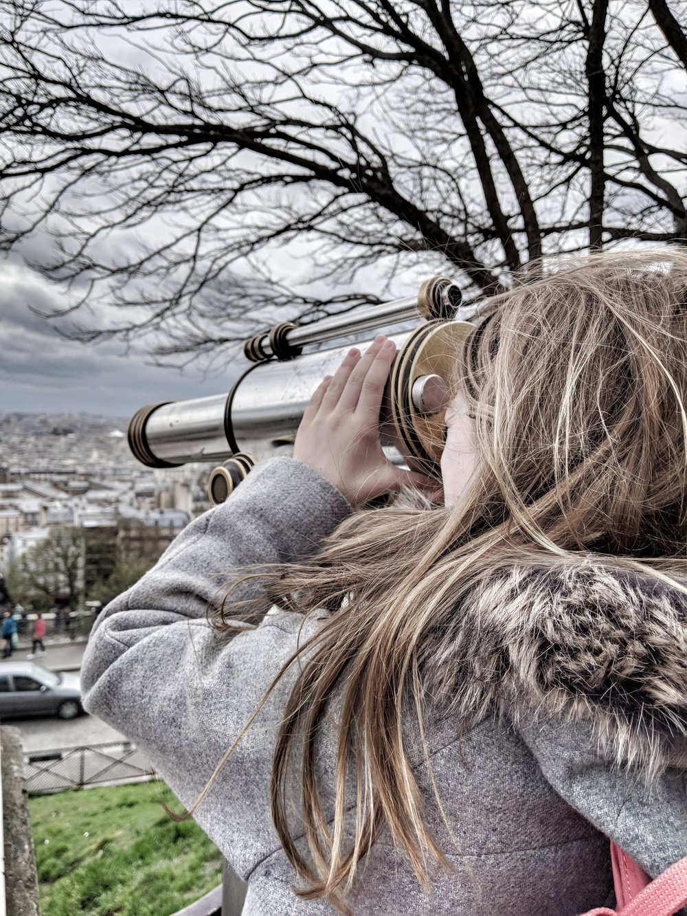 Views across Paris - Montmartre