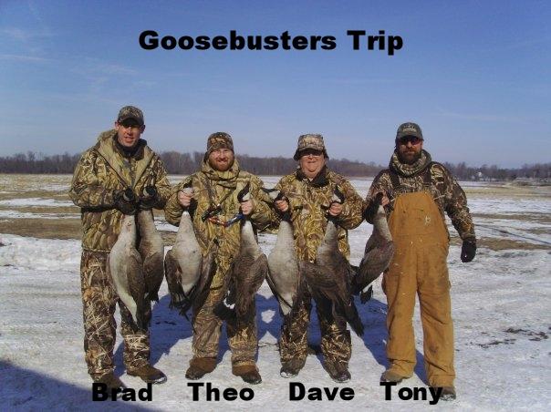 geese 1.jpg