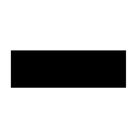 zoom_logo.png