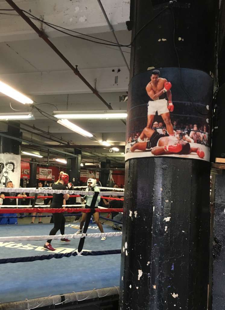 The Houston Chronicle   Ali's impact strong at famed NYC gym  It's been only hours since Muhammad Ali's death shocked the world. Inside Gleason's Gym, the hallowed boxing temple in Brooklyn, it still stings like a fresh gash.