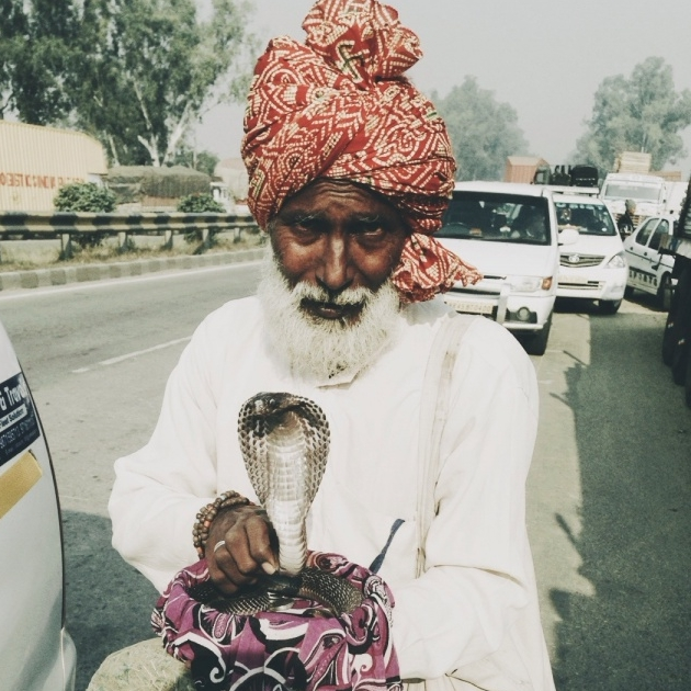 travel guide to india man with snake
