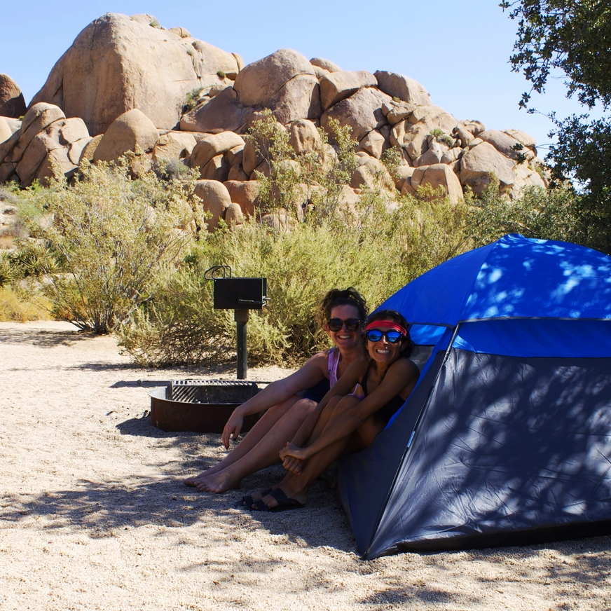 palm spring joshua tree camping budget travel guide