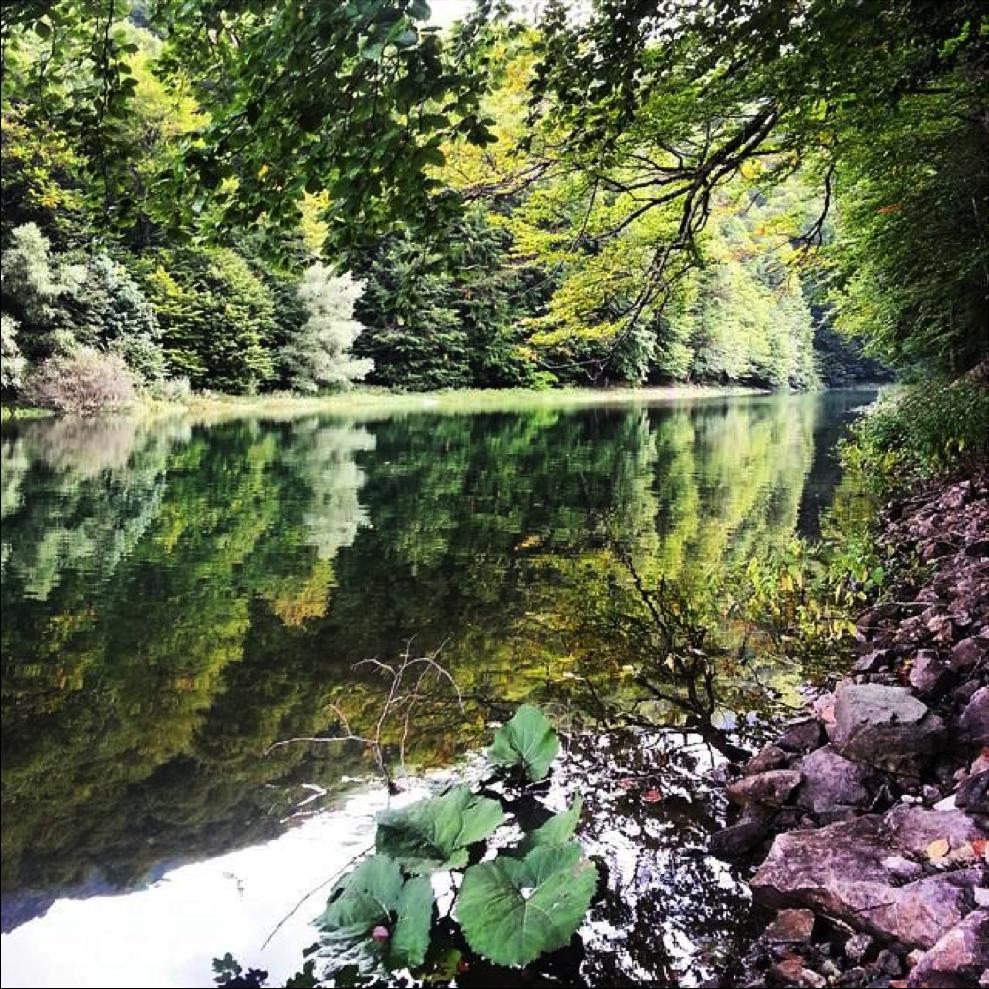 reflection lake montenegro travel guide