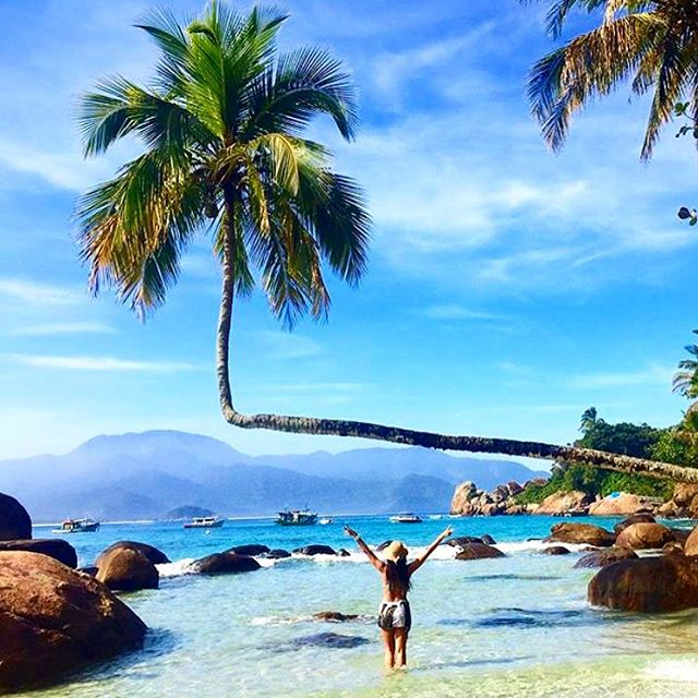 Meanwhile in #Brazil... Go home tree, you're drunk!  Positive vibes and sunlight showers await you in #Aventureiro Beach, #IlhaGrande, Brazil (via @onlyinsouthamerica)  #THINKLESSTRAVELMORE