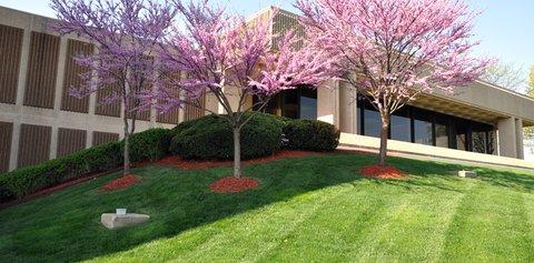 Cleveland Chiriopractic College, Kansas City, Mo.