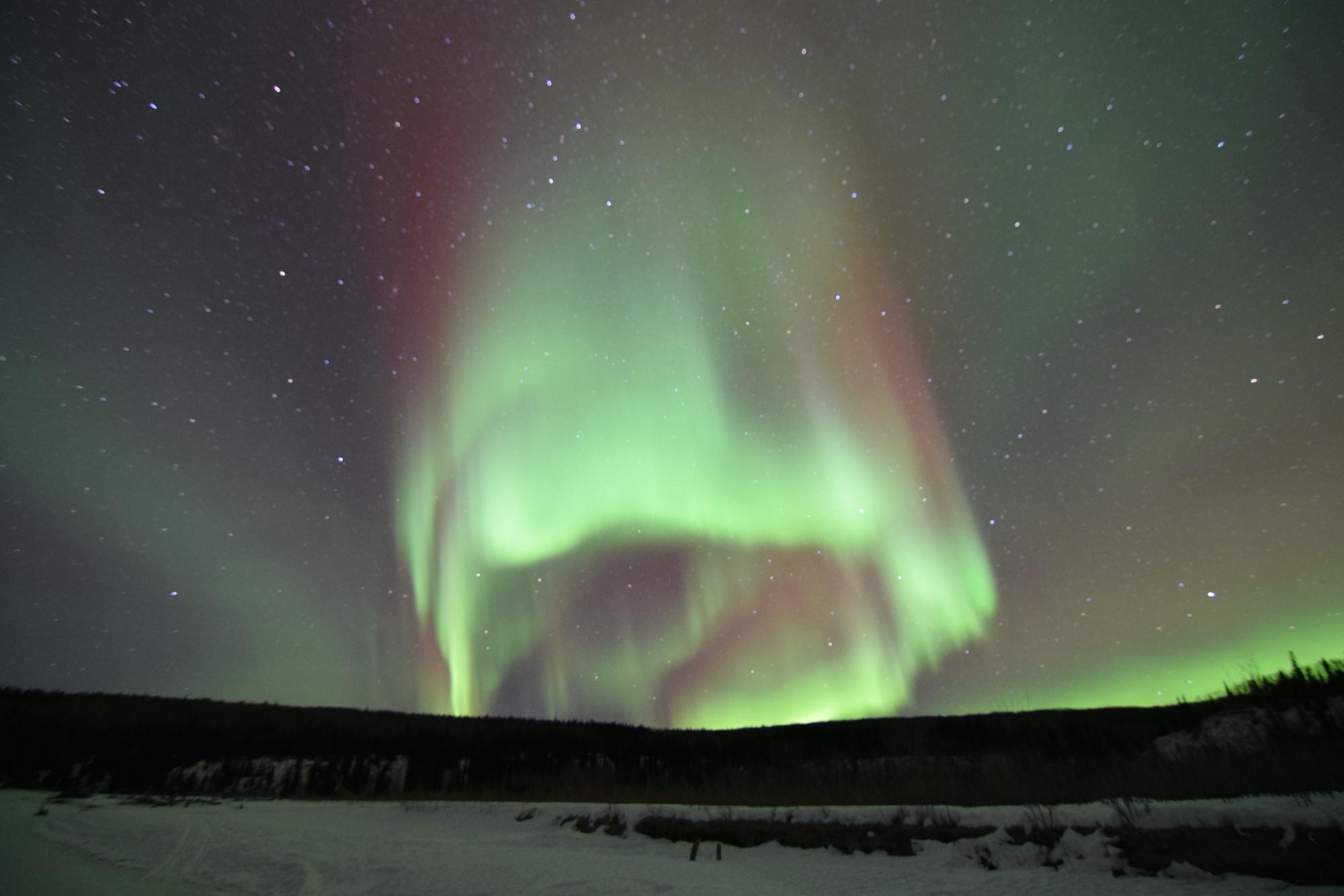 Northern Lights Boreal Journeys Alaska