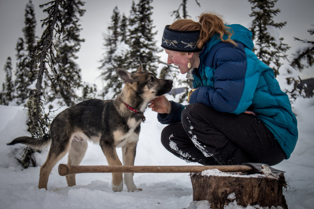 Mushing (7 of 20).jpg