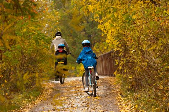 coillte-family-cycling.jpg