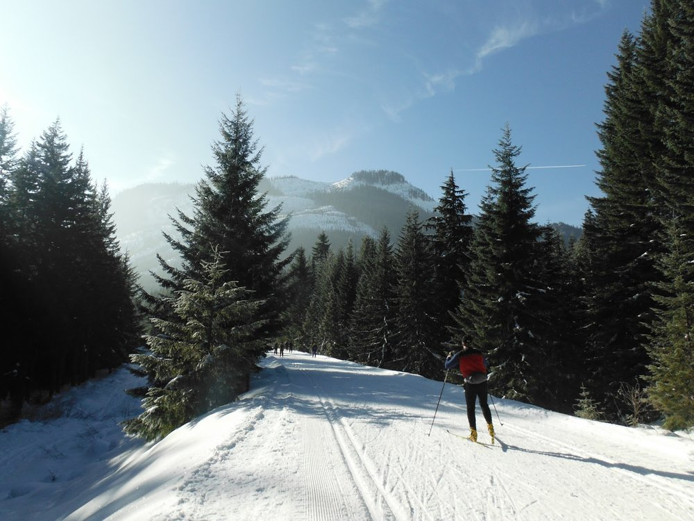 cross-country ski- rail with trail.jpg