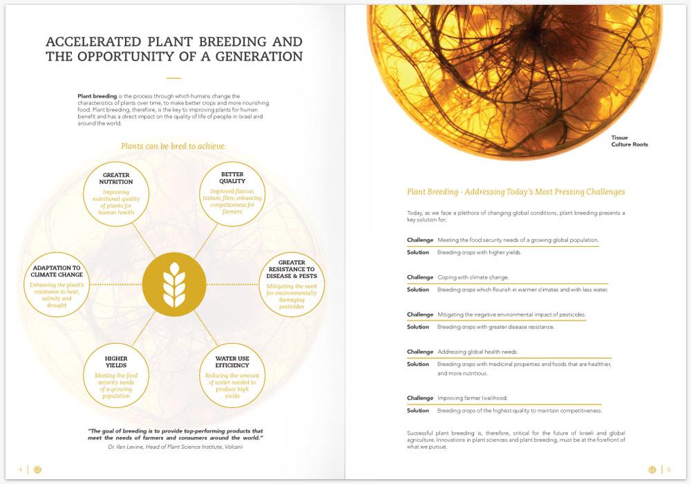 Presentation-Graphic-Michael-Fine-Designs