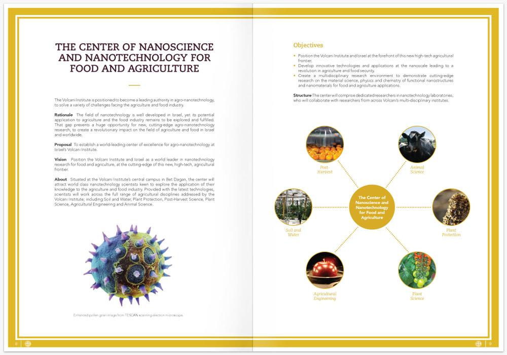 Annual-Report-Graphics-Michael-Fine-Designs