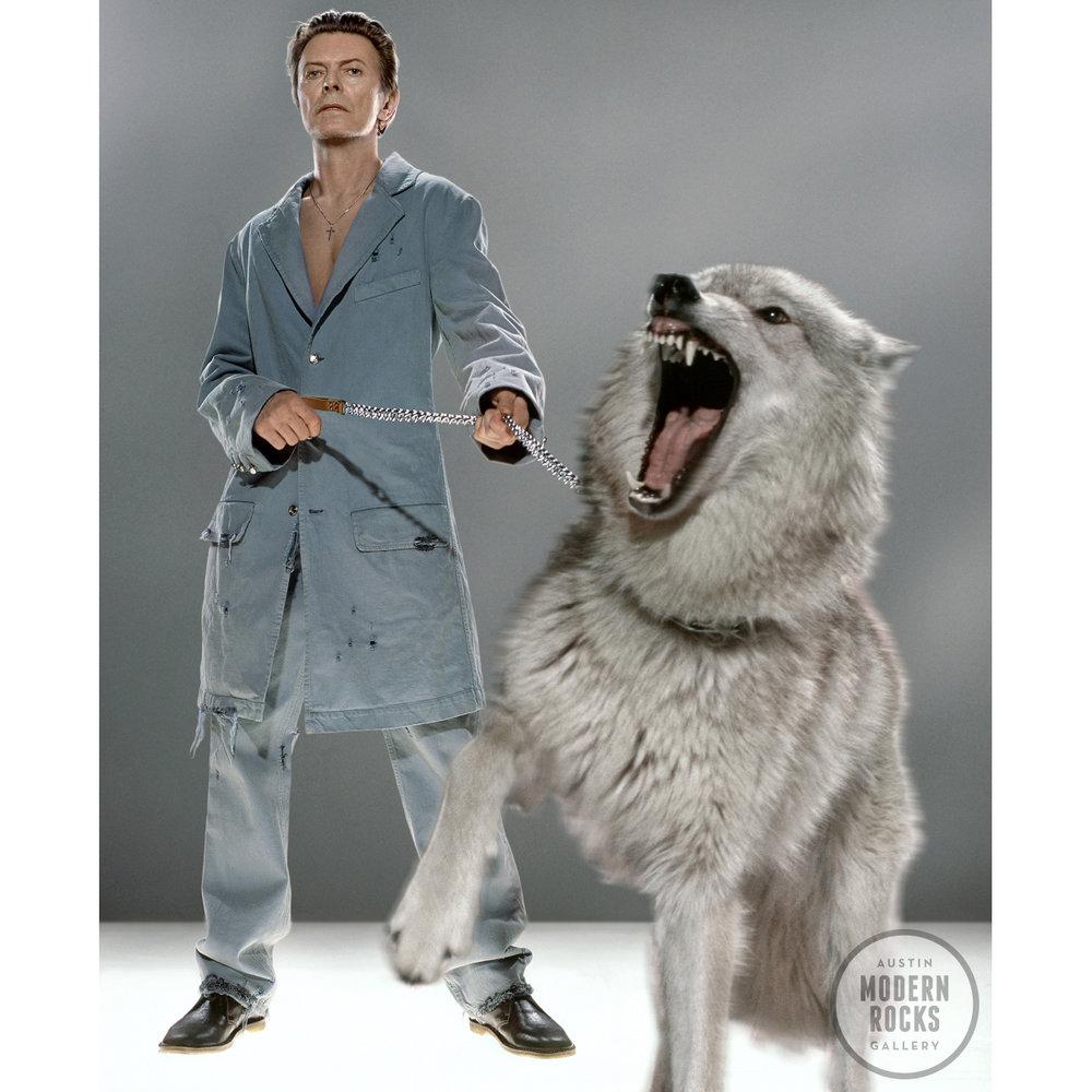 Klinko Bowie wolf.jpg