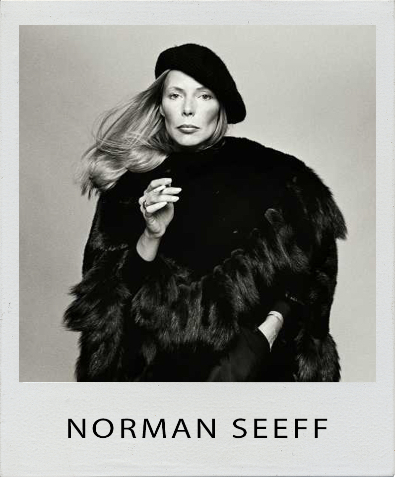 Norman Seeff Photographer