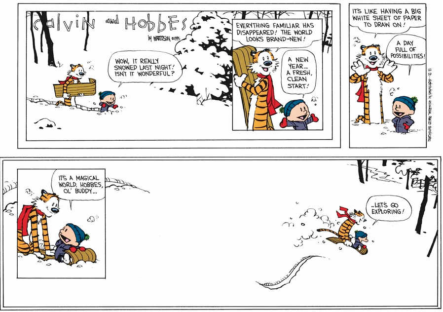 The last  Calvin and Hobbes .