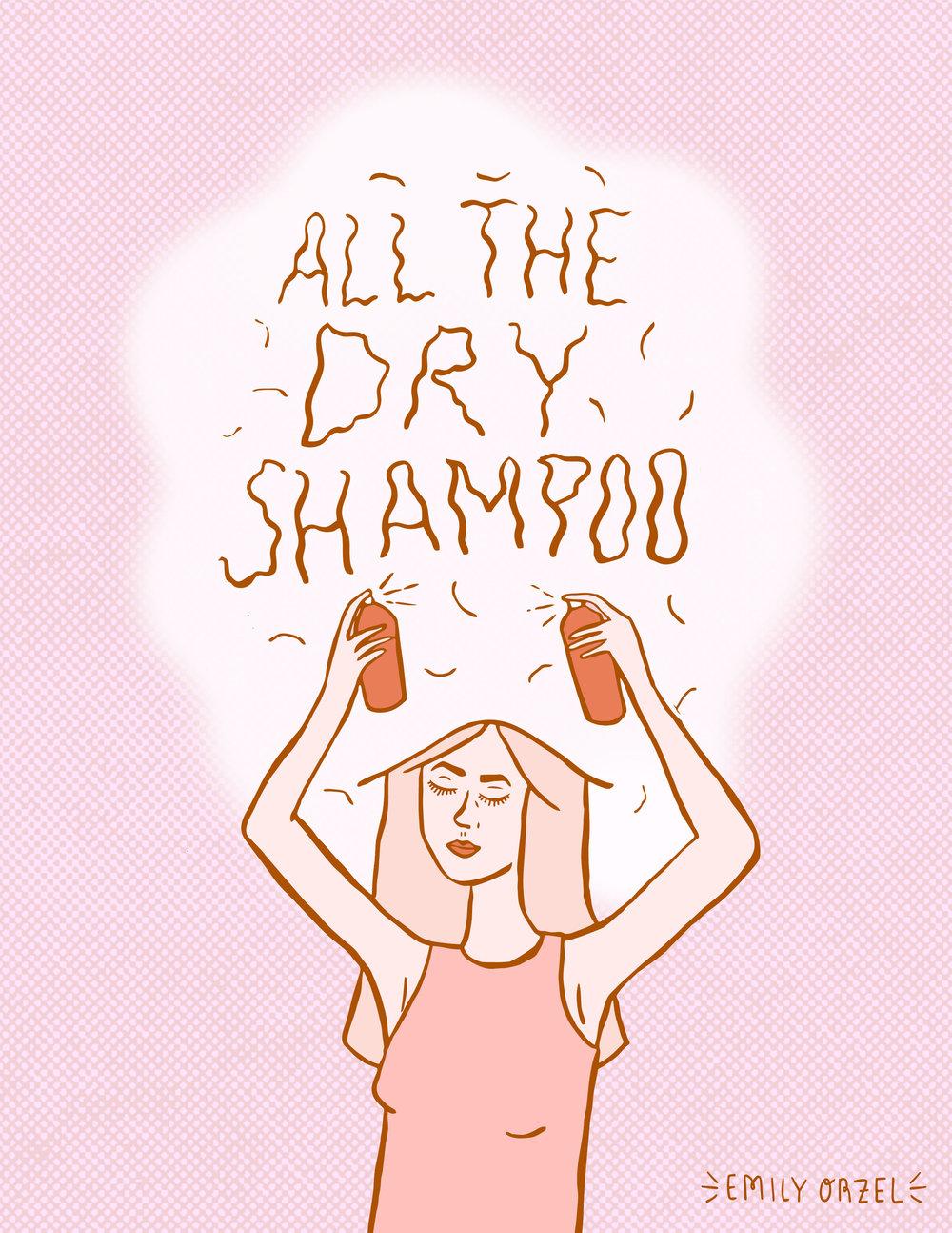 dryshamp.jpg