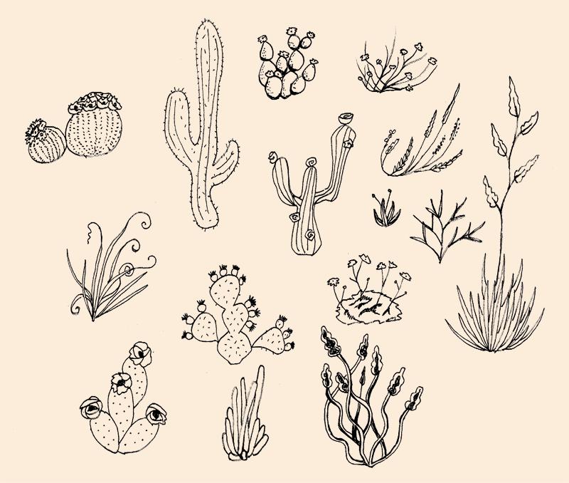 vegas.plants.png