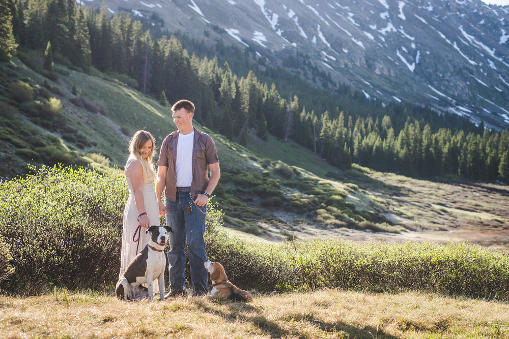 couple and dogs portraits colorado mountains