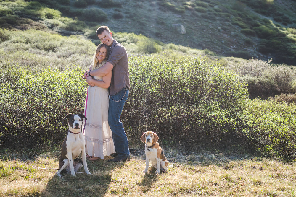 couples portraits with dogs in mountains