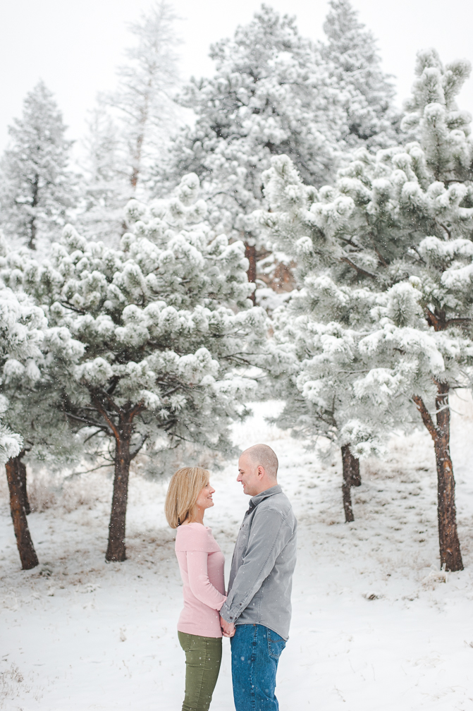February Winter Evergreen Engagement-2.jpg