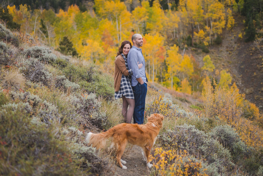 fall colorado mountain engagement session with dog