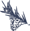 KCP_MilkyWayPinecone.png