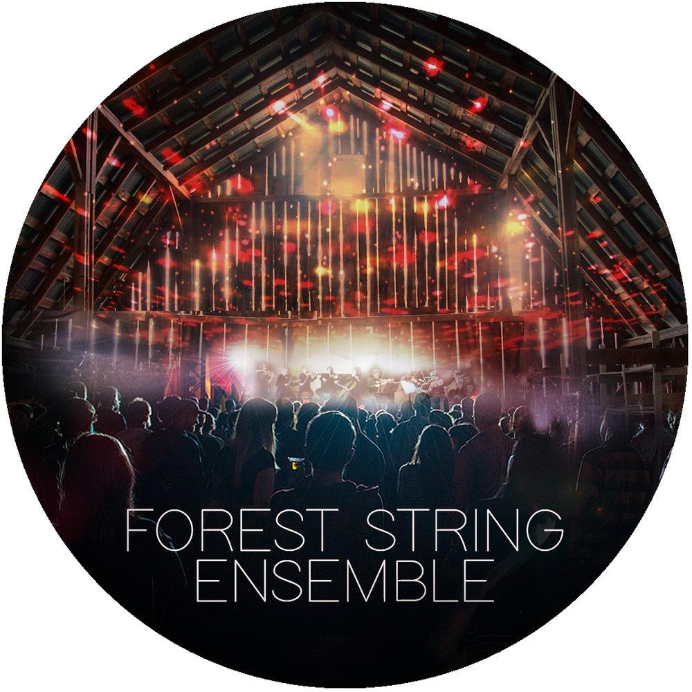 keikodevaux_foreststringensemble_arboretumfestival.jpg