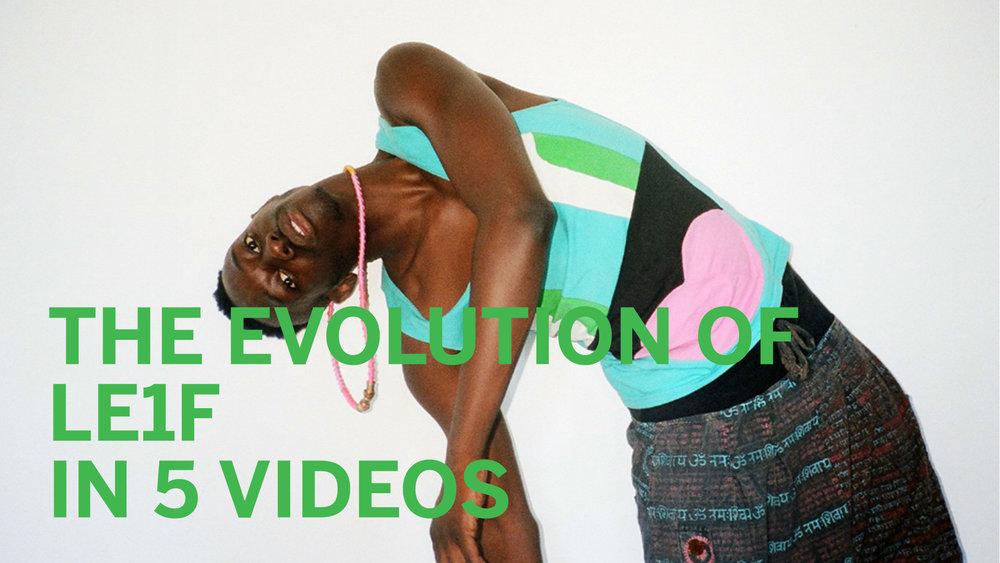 arb-evolution_LE1F.jpg