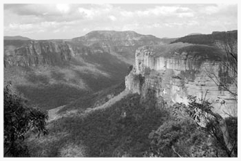 Classic view in the Blue Mountains. image: www.historyofaboriginalsydney.edu.au