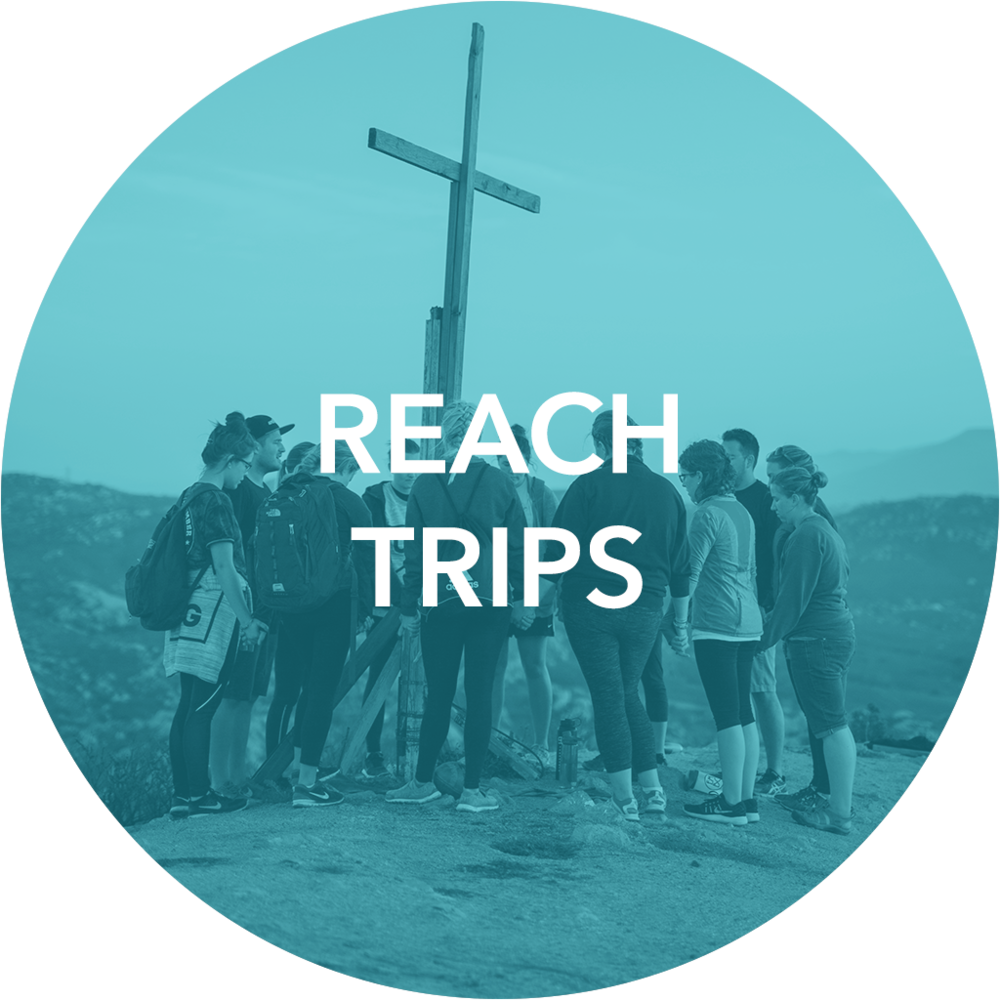 WebsiteButtons_ReachTrips.png